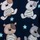 Misiek Teddy nocą